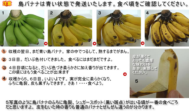 島バナナの食べ頃、食べ方