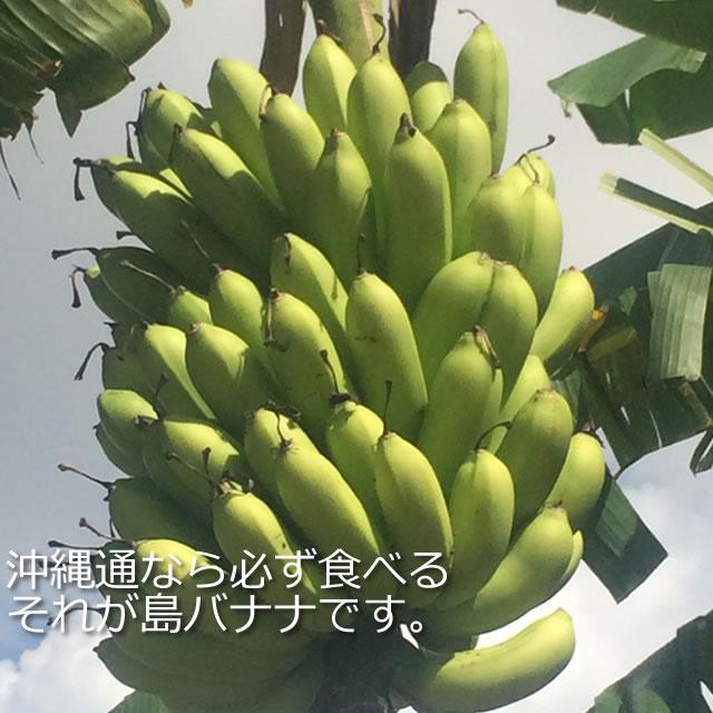 沖縄島バナナ通販