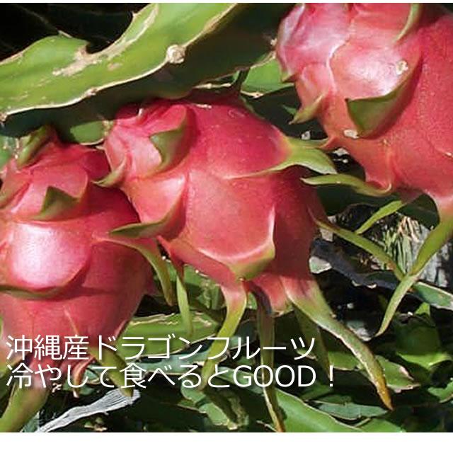 沖縄産ドラゴンフルーツ通販