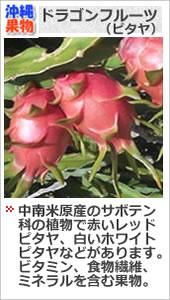 沖縄ドラゴンフルーツ