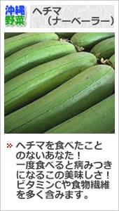 沖縄ヘチマ