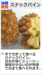 沖縄 スナックパイン