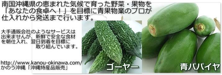 沖縄の野菜・果物通販